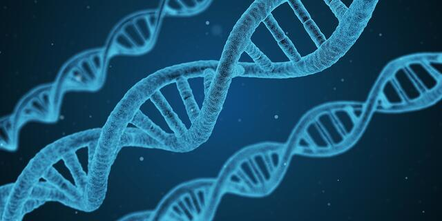 Pharmacogenetics-Potential-Employees-Health.jpg
