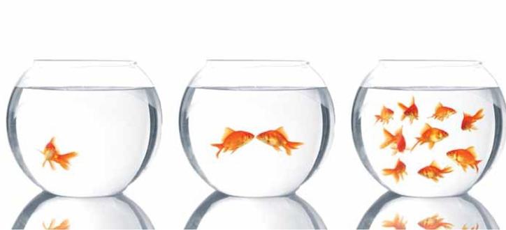 3 arrangements financiers pour vos assurances collectives